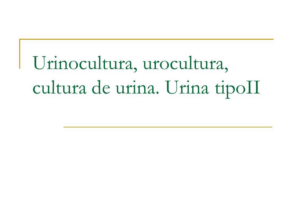 Urinocultura, urocultura, cultura de urina. Urina tipoII