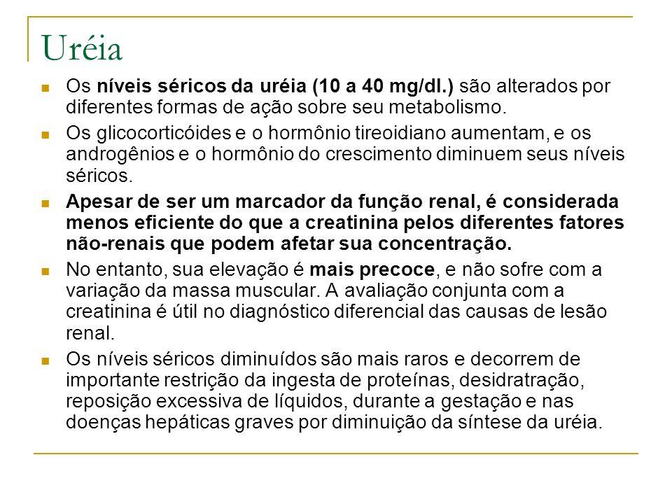 Uréia Os níveis séricos da uréia (10 a 40 mg/dl.) são alterados por diferentes formas de ação sobre seu metabolismo. Os glicocorticóides e o hormônio