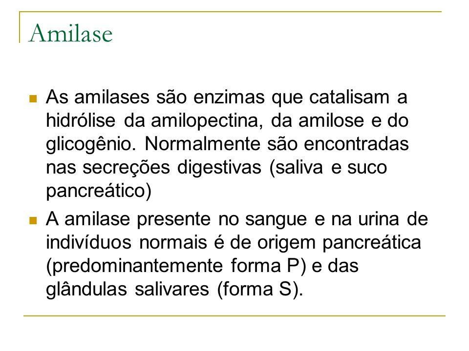 Amilase As amilases são enzimas que catalisam a hidrólise da amilopectina, da amilose e do glicogênio. Normalmente são encontradas nas secreções diges