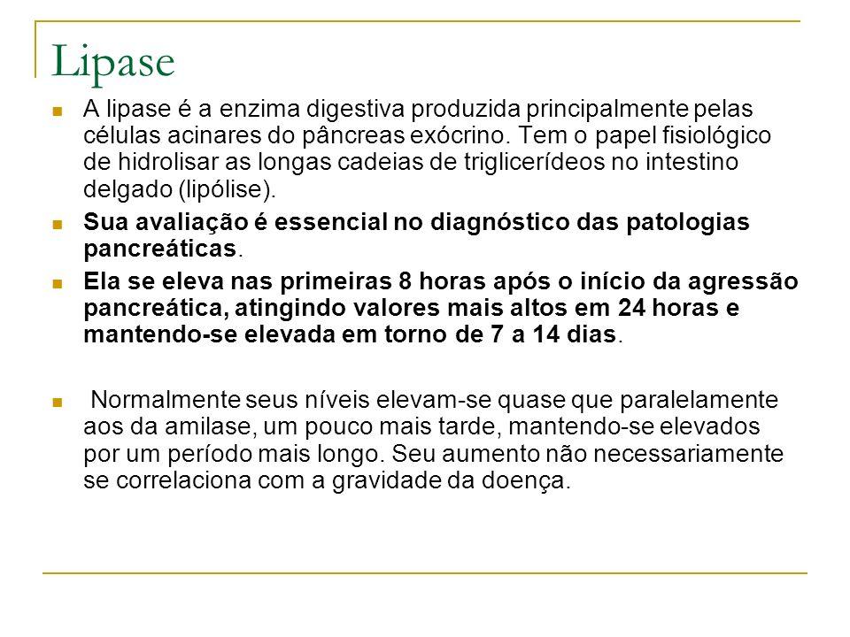 Lipase A lipase é a enzima digestiva produzida principalmente pelas células acinares do pâncreas exócrino. Tem o papel fisiológico de hidrolisar as lo