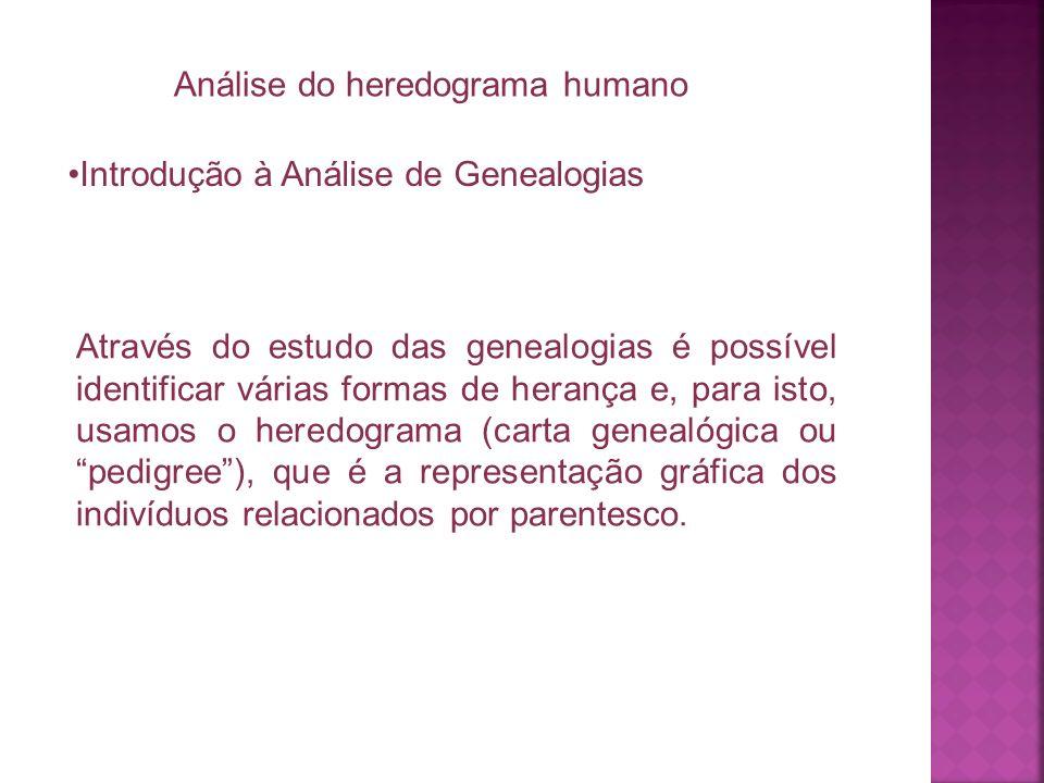 Análise do heredograma humano Introdução à Análise de Genealogias Através do estudo das genealogias é possível identificar várias formas de herança e,