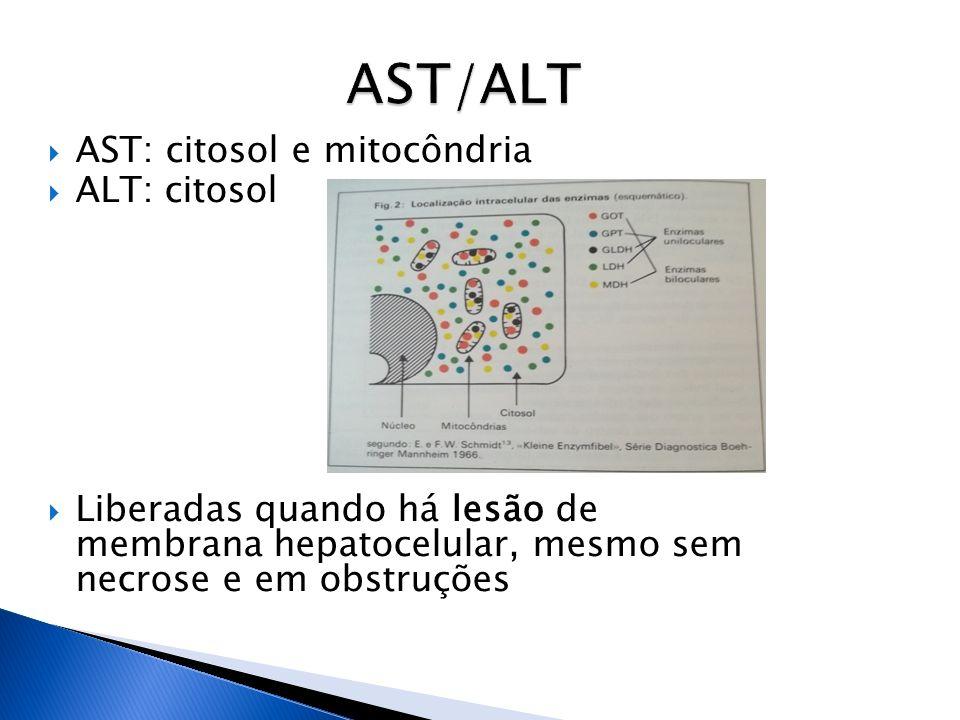 AST: citosol e mitocôndria ALT: citosol Liberadas quando há lesão de membrana hepatocelular, mesmo sem necrose e em obstruções