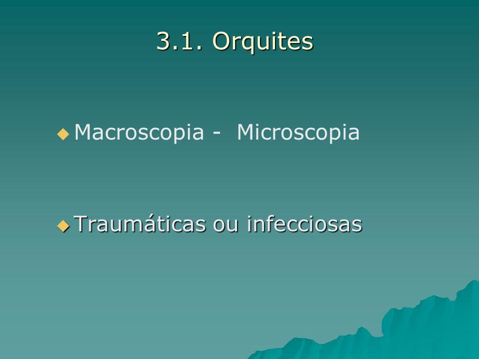 3.1. Orquites Macroscopia - Microscopia Traumáticas ou infecciosas Traumáticas ou infecciosas