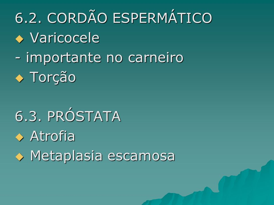 6.2. CORDÃO ESPERMÁTICO Varicocele Varicocele - importante no carneiro Torção Torção 6.3. PRÓSTATA Atrofia Atrofia Metaplasia escamosa Metaplasia esca