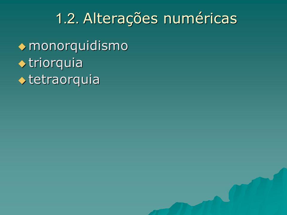 1.2. Alterações numéricas monorquidismo monorquidismo triorquia triorquia tetraorquia tetraorquia