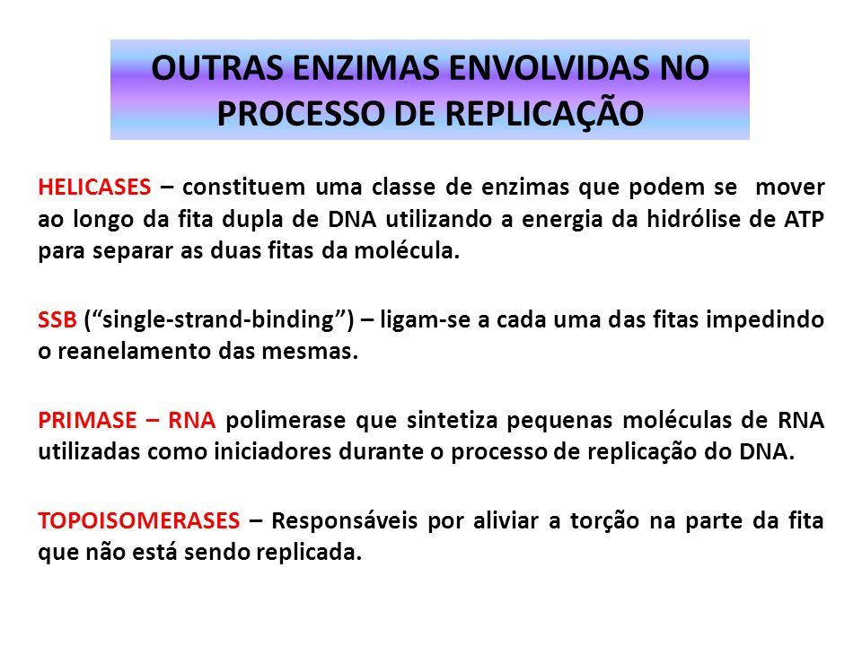 NUCLEASES - Degradam o DNA, clivando-o em pedaços menores 1.EXONUCLEASES: clivam o DNA a partir do final da molécula 2.ENDONUCLEASES: clivam em qualqu