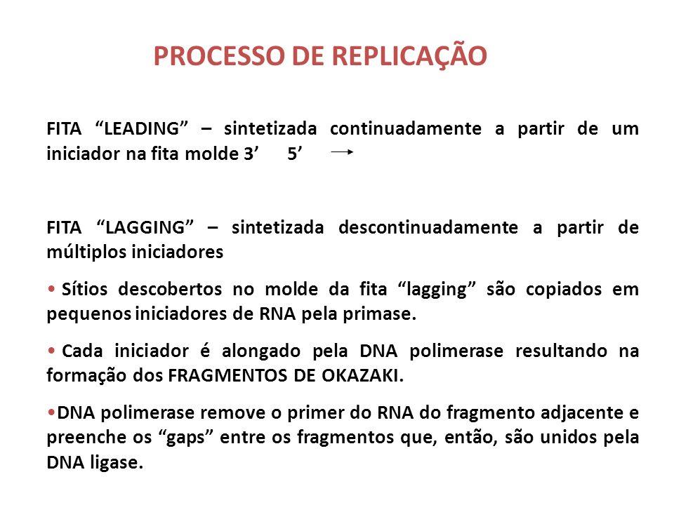 PROCESSO DE REPLICAÇÃO O movimento da forquilha de replicação revela uma fita molde no sentido 3 5 e outra no sentido oposto 5 3 Desta forma, as fitas