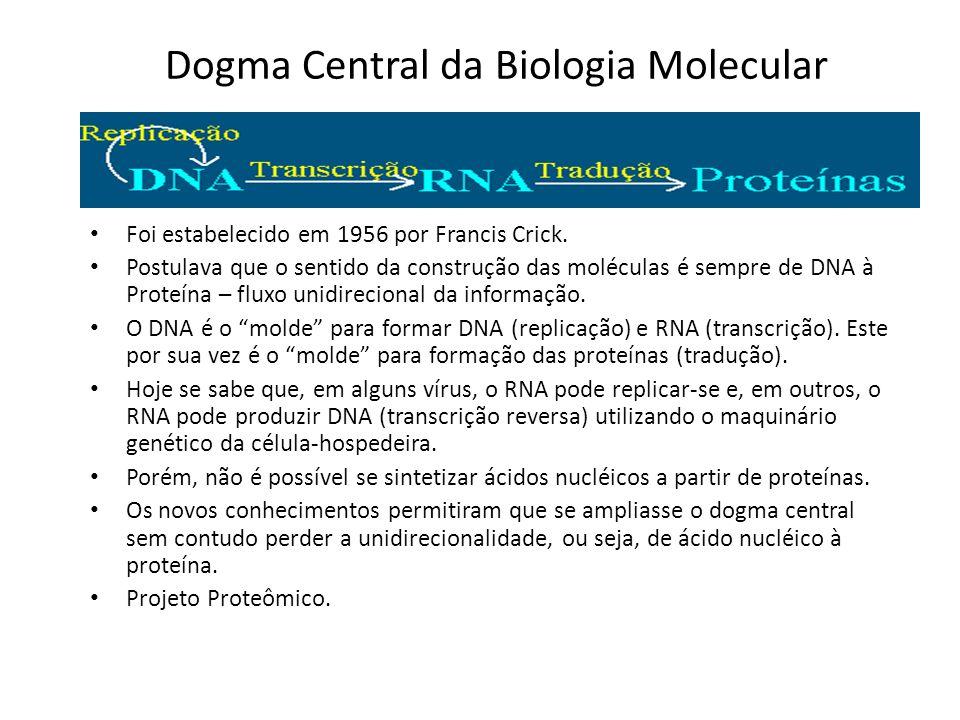 Dogma Central da Biologia Molecular Foi estabelecido em 1956 por Francis Crick.