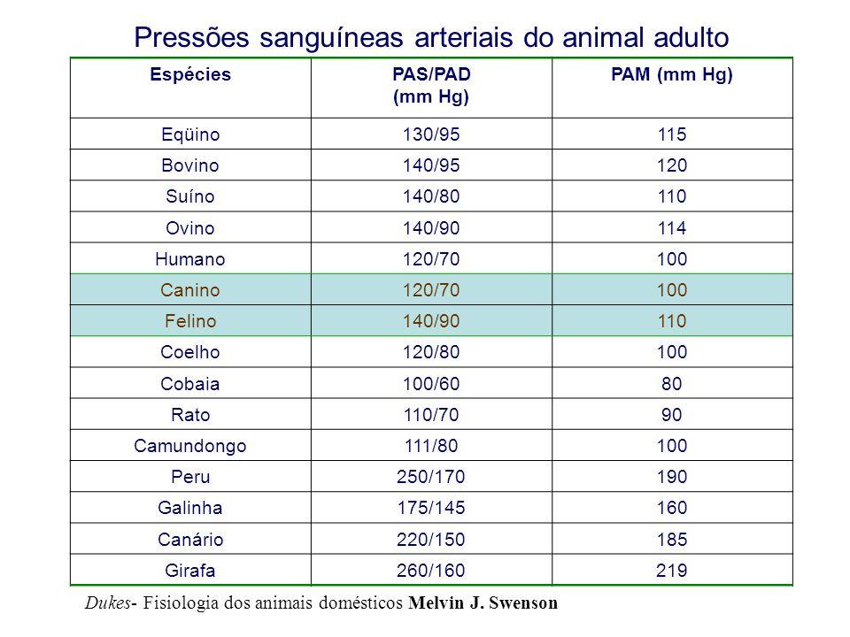 Pressões sanguíneas arteriais do animal adulto EspéciesPAS/PAD (mm Hg) PAM (mm Hg) Eqüino130/95115 Bovino140/95120 Suíno140/80110 Ovino140/90114 Humano120/70100 Canino120/70100 Felino140/90110 Coelho120/80100 Cobaia100/6080 Rato110/7090 Camundongo111/80100 Peru250/170190 Galinha175/145160 Canário220/150185 Girafa260/160219 Dukes- Fisiologia dos animais domésticos Melvin J.