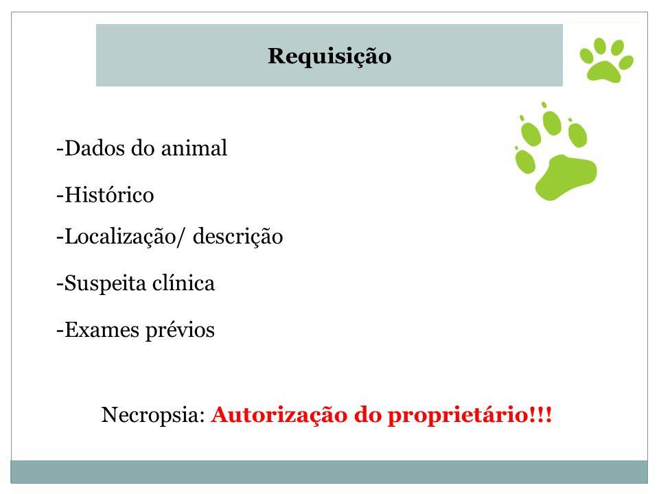 -Exames prévios Necropsia: Autorização do proprietário!!! Requisição -Dados do animal -Histórico -Localização/ descrição -Suspeita clínica