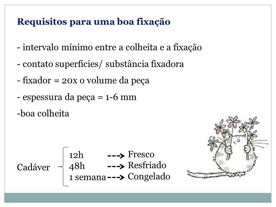 Requisitos para uma boa fixação - intervalo mínimo entre a colheita e a fixação - contato superfícies/ substância fixadora - fixador = 20x o volume da