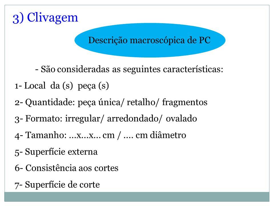 3) Clivagem Descrição macroscópica de PC 1- Local da (s) peça (s) 2- Quantidade: peça única/ retalho/ fragmentos 3- Formato: irregular/ arredondado/ o