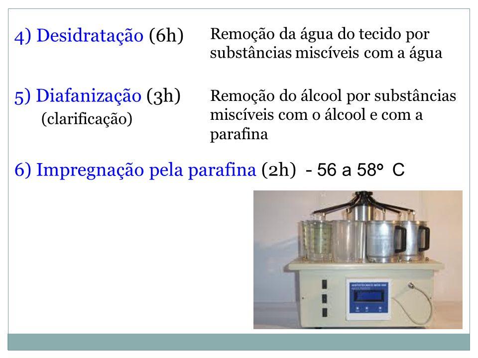 4) Desidratação (6h) 5) Diafanização (3h) (clarificação) 6) Impregnação pela parafina (2h) - 56 a 58 o C Remoção da água do tecido por substâncias mis