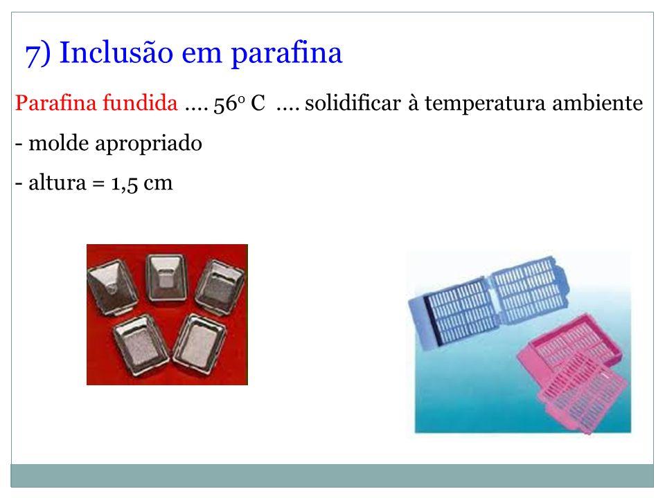 7) Inclusão em parafina Parafina fundida.... 56 o C.... solidificar à temperatura ambiente - molde apropriado - altura = 1,5 cm