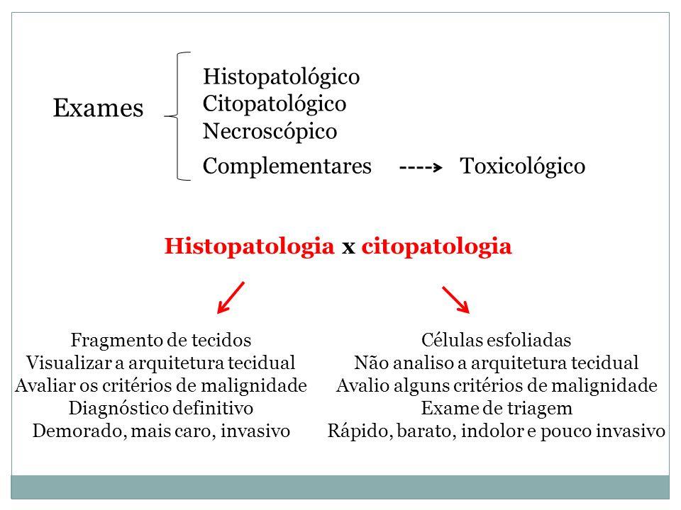 Exames Histopatológico Citopatológico Necroscópico Toxicológico Complementares Histopatologia x citopatologia Fragmento de tecidos Visualizar a arquit