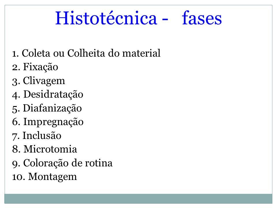 Histotécnica - fases 1. Coleta ou Colheita do material 2. Fixação 3. Clivagem 4. Desidratação 5. Diafanização 6. Impregnação 7. Inclusão 8. Microtomia
