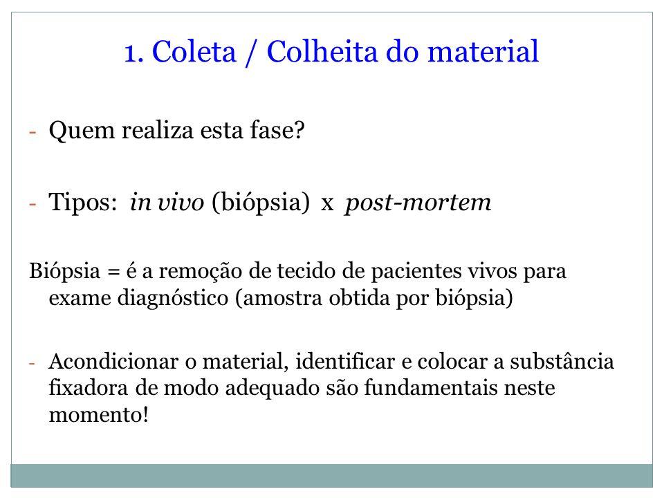 1. Coleta / Colheita do material - Quem realiza esta fase? - Tipos: in vivo (biópsia) x post-mortem Biópsia = é a remoção de tecido de pacientes vivos