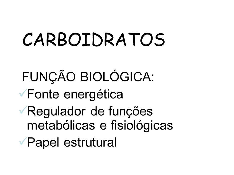CARBOIDRATOS FUNÇÃO BIOLÓGICA: Fonte energética Regulador de funções metabólicas e fisiológicas Papel estrutural