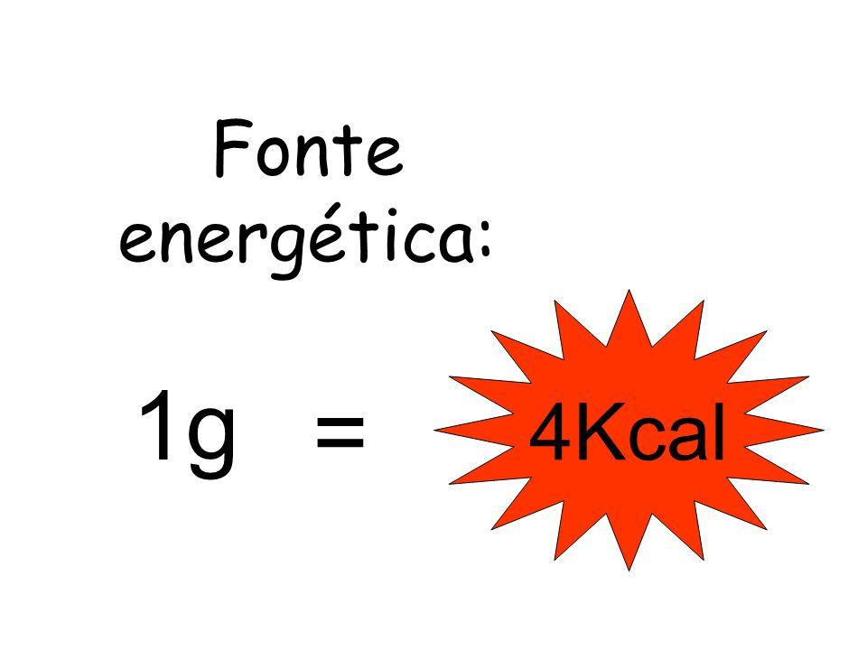 Fonte energética: 1g 4Kcal =