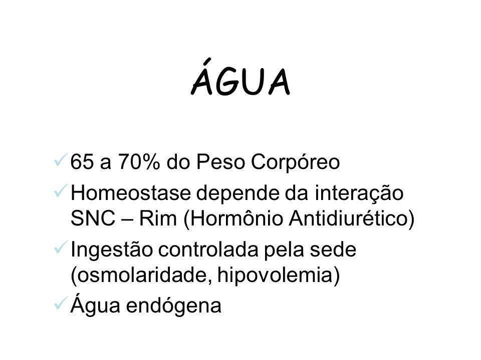 ÁGUA 65 a 70% do Peso Corpóreo Homeostase depende da interação SNC – Rim (Hormônio Antidiurético) Ingestão controlada pela sede (osmolaridade, hipovol