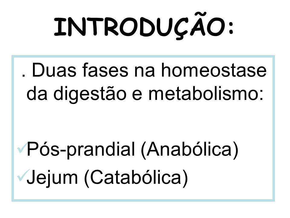 INTRODUÇÃO:. Duas fases na homeostase da digestão e metabolismo: Pós-prandial (Anabólica) Jejum (Catabólica)