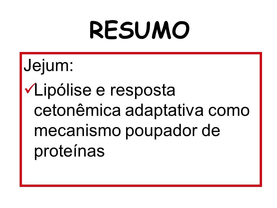 Jejum: Lipólise e resposta cetonêmica adaptativa como mecanismo poupador de proteínas RESUMO