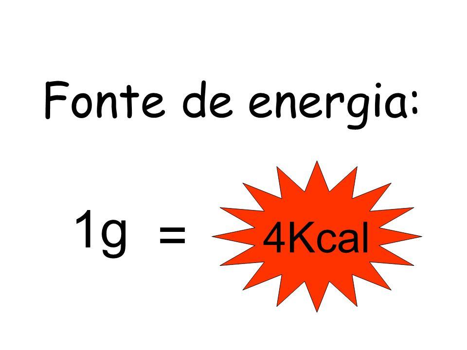Fonte de energia: 1g 4Kcal =