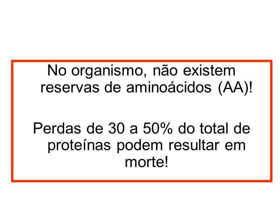 No organismo, não existem reservas de aminoácidos (AA)! Perdas de 30 a 50% do total de proteínas podem resultar em morte!