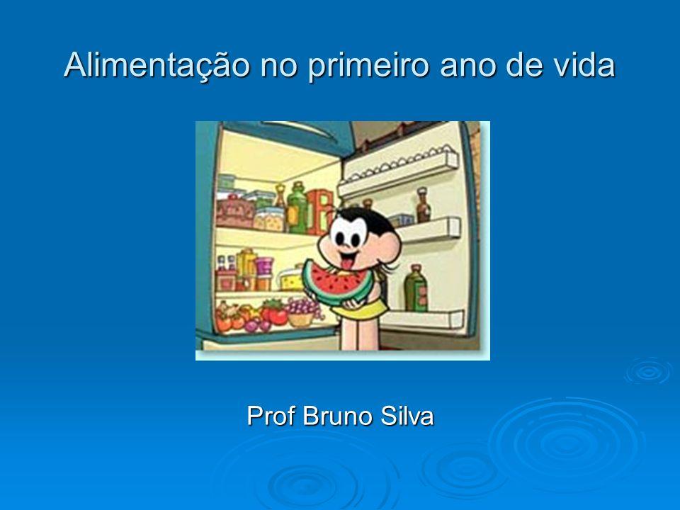 Alimentação no primeiro ano de vida Prof Bruno Silva