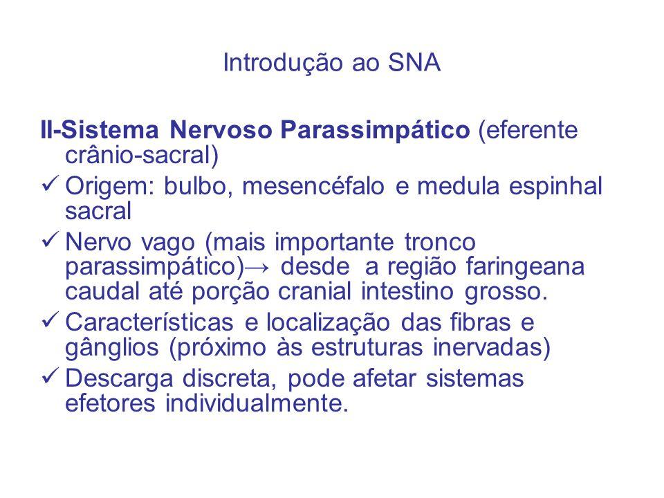 Introdução ao SNA II-Sistema Nervoso Parassimpático (eferente crânio-sacral) Origem: bulbo, mesencéfalo e medula espinhal sacral Nervo vago (mais impo