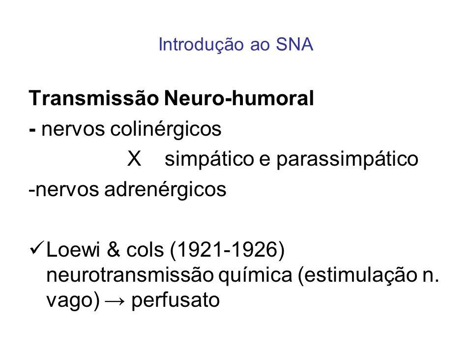 Introdução ao SNA Transmissão Neuro-humoral - nervos colinérgicos X simpático e parassimpático -nervos adrenérgicos Loewi & cols (1921-1926) neurotran