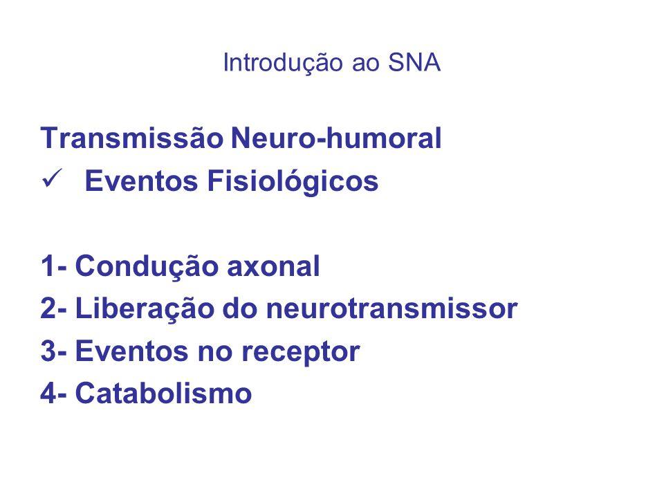Introdução ao SNA Transmissão Neuro-humoral Eventos Fisiológicos 1- Condução axonal 2- Liberação do neurotransmissor 3- Eventos no receptor 4- Catabol