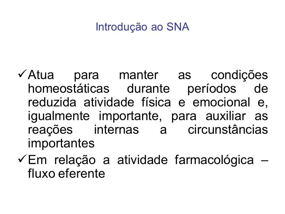 Introdução ao SNA Atua para manter as condições homeostáticas durante períodos de reduzida atividade física e emocional e, igualmente importante, para