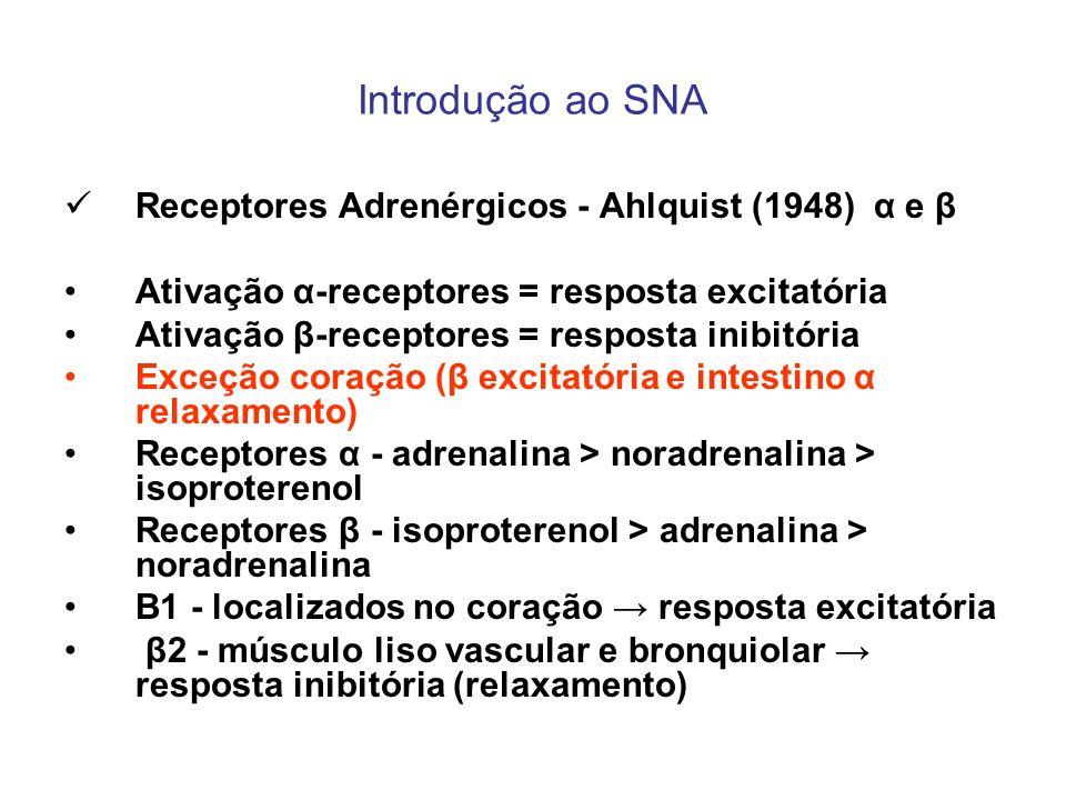 Introdução ao SNA Receptores Adrenérgicos - Ahlquist (1948) α e β Ativação α-receptores = resposta excitatória Ativação β-receptores = resposta inibit
