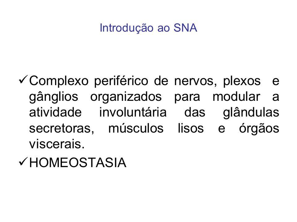 Introdução ao SNA Complexo periférico de nervos, plexos e gânglios organizados para modular a atividade involuntária das glândulas secretoras, músculo