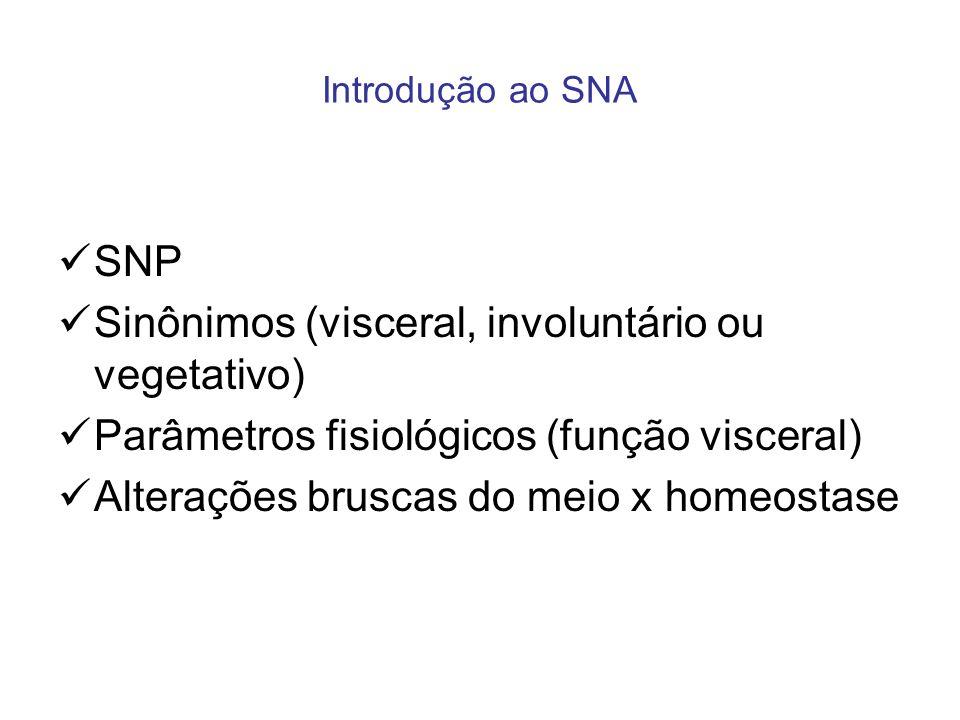 Introdução ao SNA SNP Sinônimos (visceral, involuntário ou vegetativo) Parâmetros fisiológicos (função visceral) Alterações bruscas do meio x homeosta