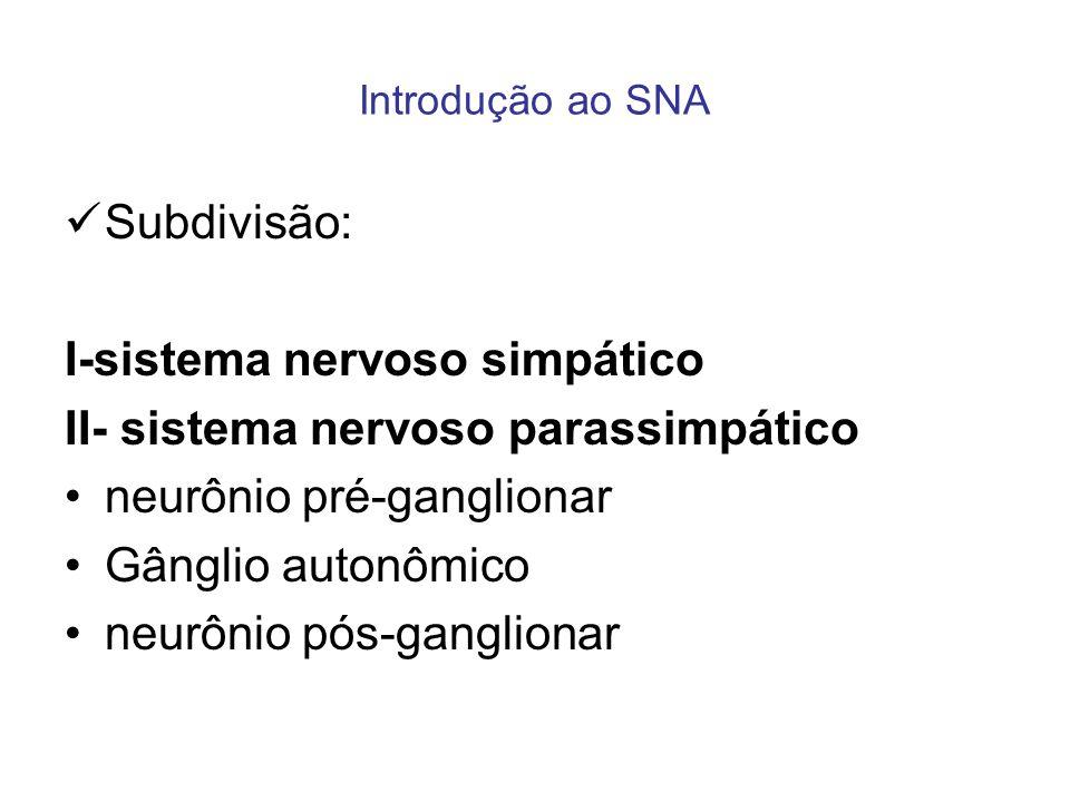 Introdução ao SNA Subdivisão: I-sistema nervoso simpático II- sistema nervoso parassimpático neurônio pré-ganglionar Gânglio autonômico neurônio pós-g