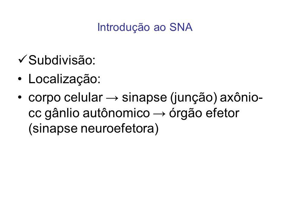 Introdução ao SNA Subdivisão: Localização: corpo celular sinapse (junção) axônio- cc gânlio autônomico órgão efetor (sinapse neuroefetora)