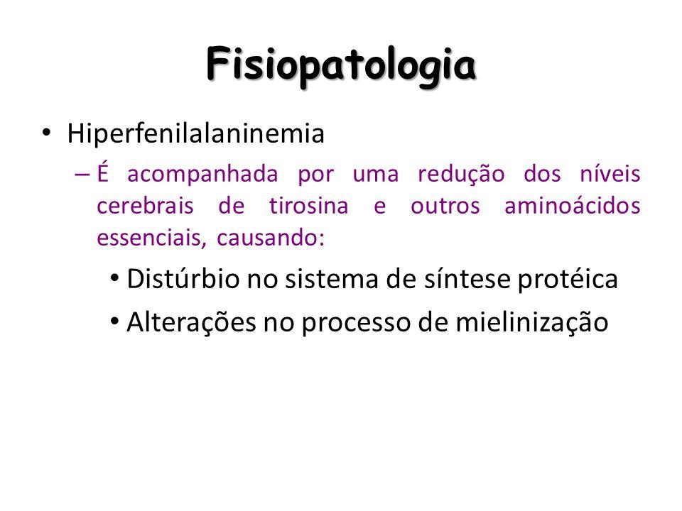 Fisiopatologia Hiperfenilalaninemia – É acompanhada por uma redução dos níveis cerebrais de tirosina e outros aminoácidos essenciais, causando: Distúr