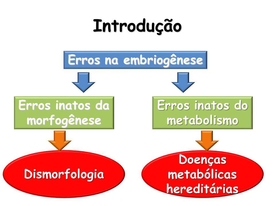 Introdução Erros na embriogênese Erros inatos da morfogênese Erros inatos do metabolismo Dismorfologia Doenças metabólicas hereditárias