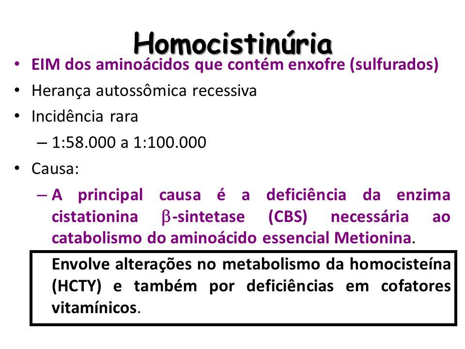 Homocistinúria EIM dos aminoácidos que contém enxofre (sulfurados) Herança autossômica recessiva Incidência rara – 1:58.000 a 1:100.000 Causa: – A pri