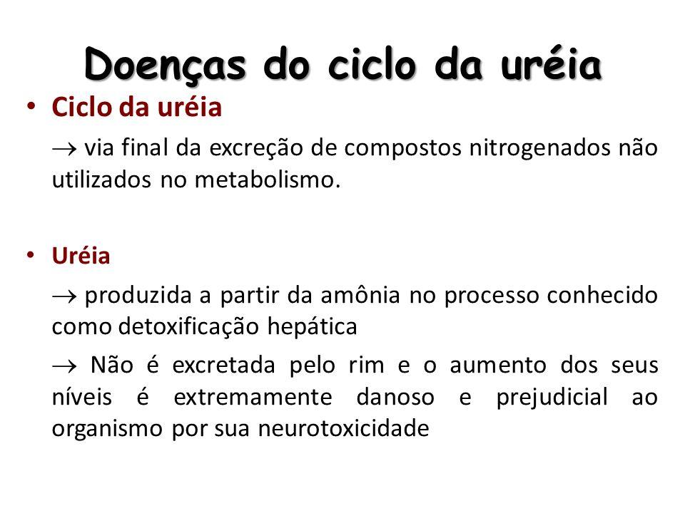 Doenças do ciclo da uréia Ciclo da uréia via final da excreção de compostos nitrogenados não utilizados no metabolismo. Uréia produzida a partir da am