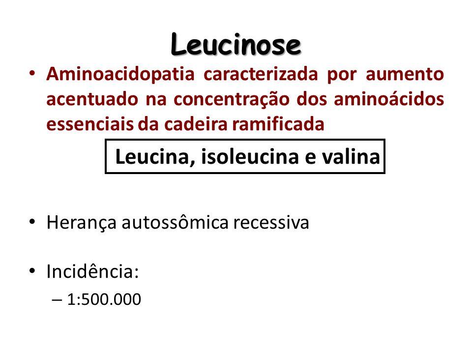 Leucinose Aminoacidopatia caracterizada por aumento acentuado na concentração dos aminoácidos essenciais da cadeira ramificada Leucina, isoleucina e v