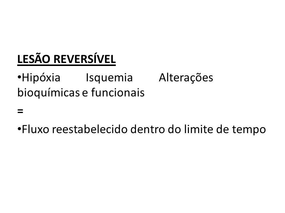 LESÃO REVERSÍVEL Hipóxia Isquemia Alterações bioquímicas e funcionais = Fluxo reestabelecido dentro do limite de tempo