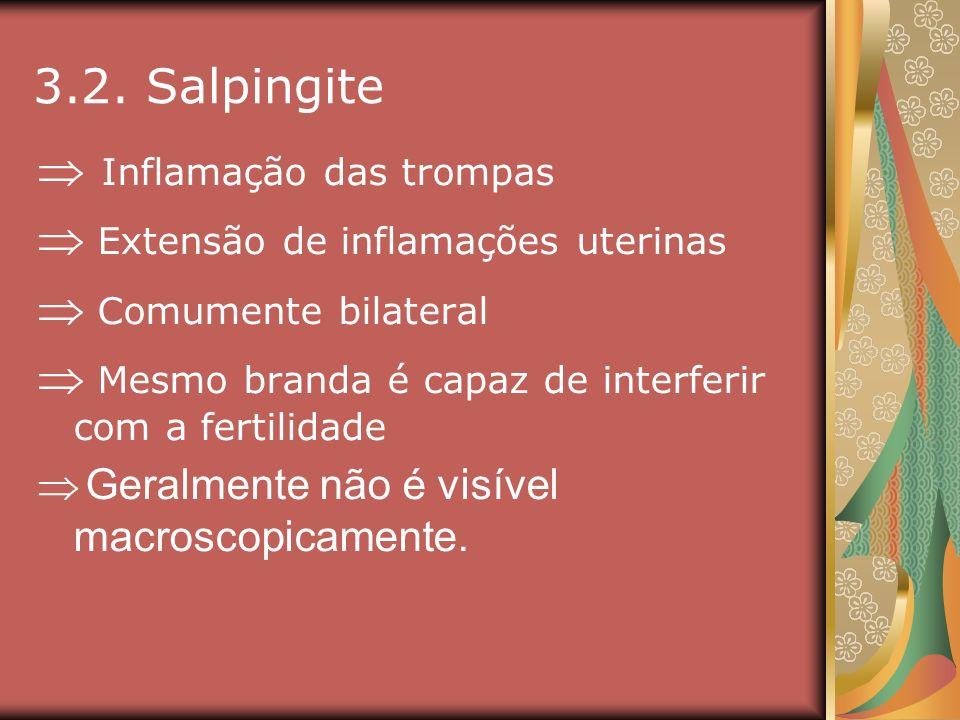 3.2. Salpingite Inflamação das trompas Extensão de inflamações uterinas Comumente bilateral Mesmo branda é capaz de interferir com a fertilidade Geral