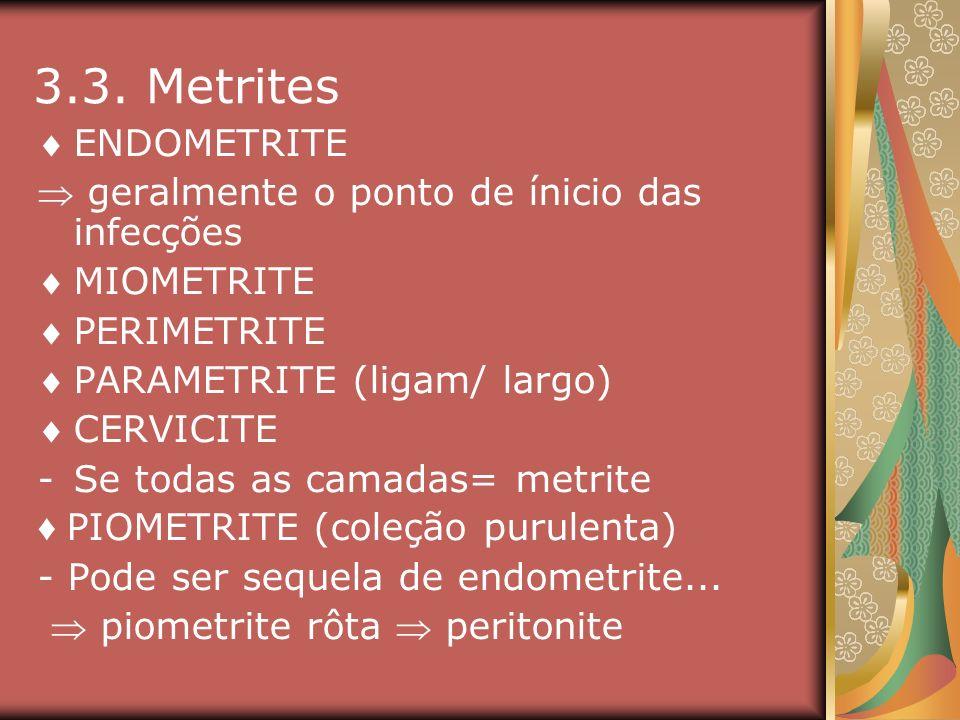 3.3. Metrites ENDOMETRITE geralmente o ponto de ínicio das infecções MIOMETRITE PERIMETRITE PARAMETRITE (ligam/ largo) CERVICITE -Se todas as camadas=
