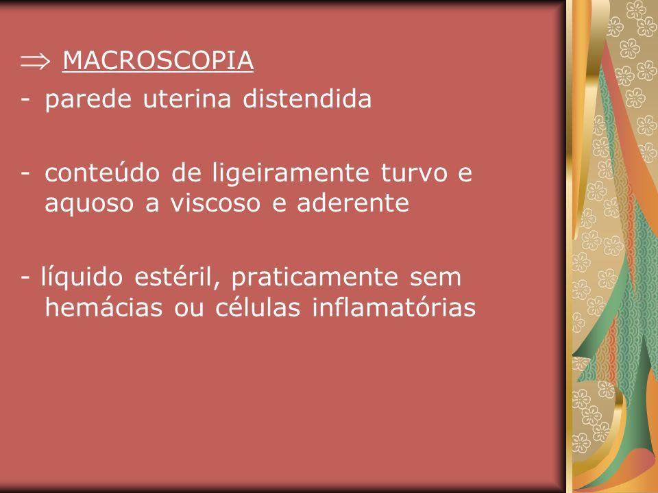 MACROSCOPIA -parede uterina distendida -conteúdo de ligeiramente turvo e aquoso a viscoso e aderente - líquido estéril, praticamente sem hemácias ou c