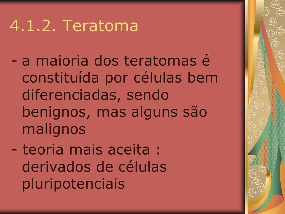4.1.2. Teratoma -a maioria dos teratomas é constituída por células bem diferenciadas, sendo benignos, mas alguns são malignos - teoria mais aceita : d