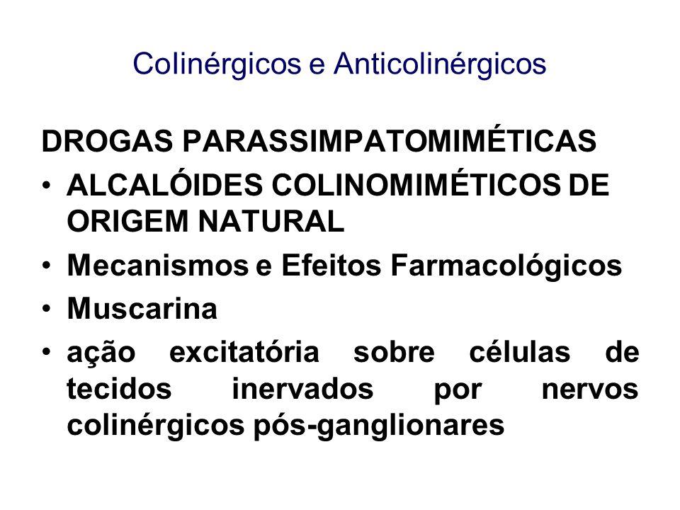CoIinérgicos e Anticolinérgicos DROGAS PARASSIMPATOMIMÉTICAS ALCALÓIDES COLINOMIMÉTICOS DE ORIGEM NATURAL Mecanismos e Efeitos Farmacológicos Muscarin