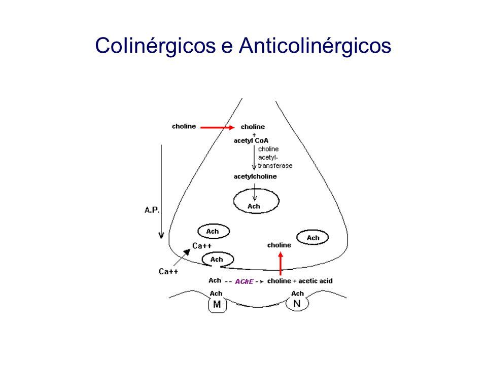 CoIinérgicos e Anticolinérgicos DROGAS PARASSIMPATOLíTICAS EFEITOS FARMACOLÓGICOS Efeitos oculares - músculo esfincteriano da íris e o músculo ciliar do cristalino